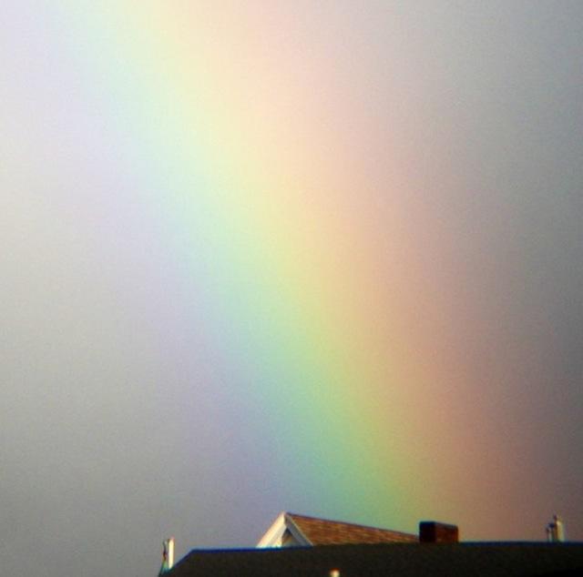 rainbowinsurance