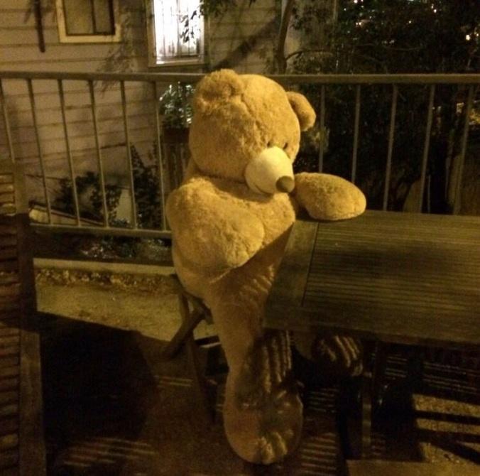 bear.erin