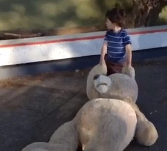 kid.bear