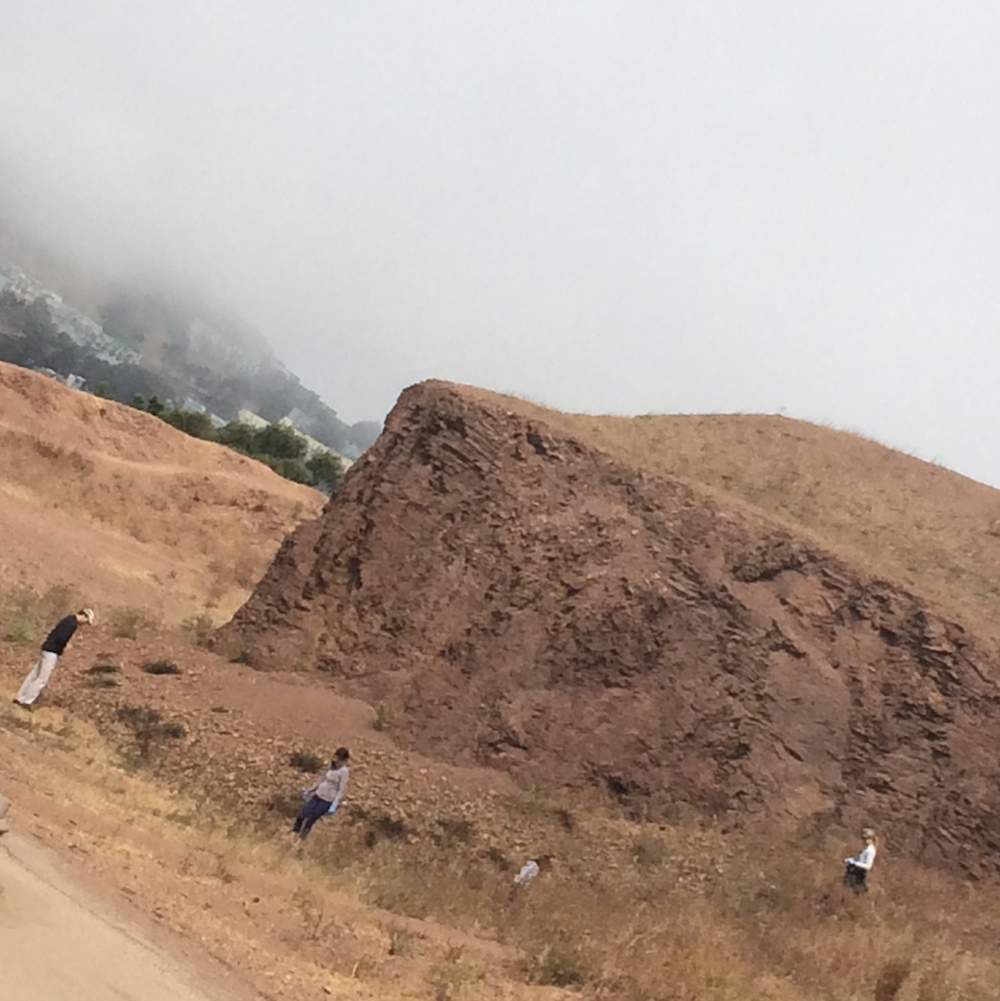 Bernal Hill Cleanup Was Successful — and Social