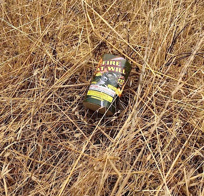 Bernal Hill Escapes Fourth Unburned, Despite Efforts of Dimwits