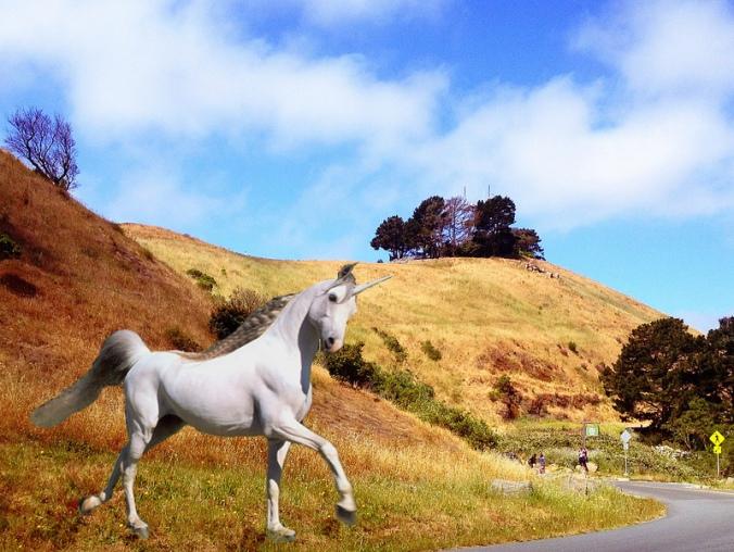unicornhill