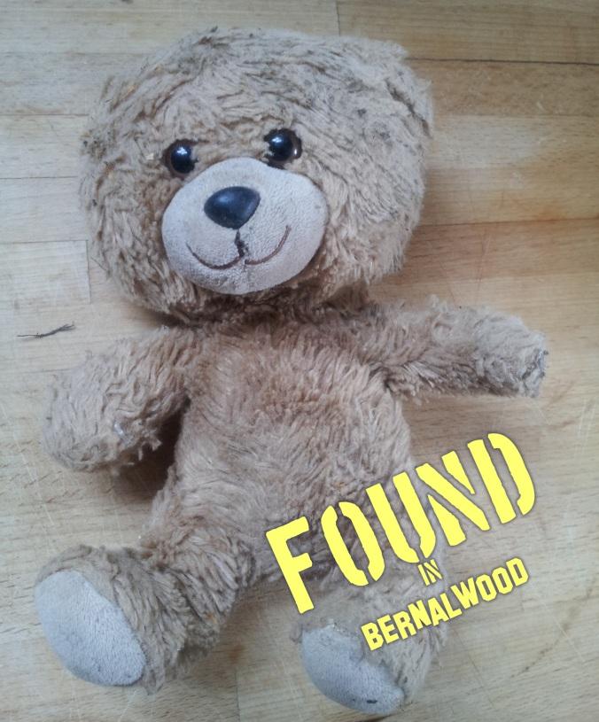 foundbear2