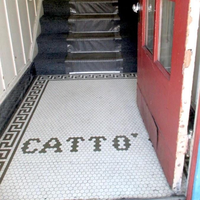 Cattofloor