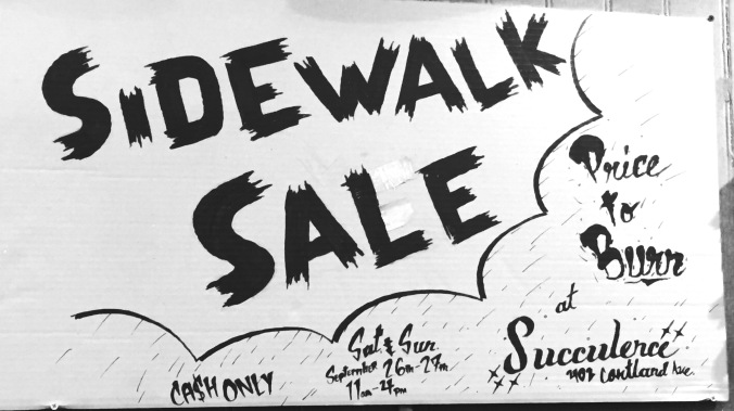 SidewalkSaleSucculence