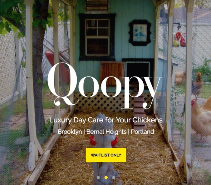 Qoopy