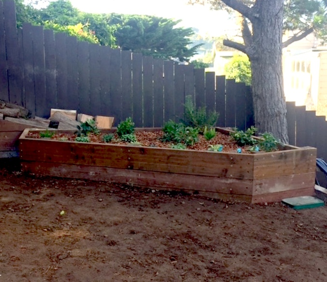 """""""New planters!"""""""