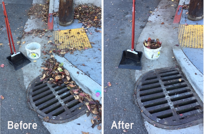 drainbeforeafter