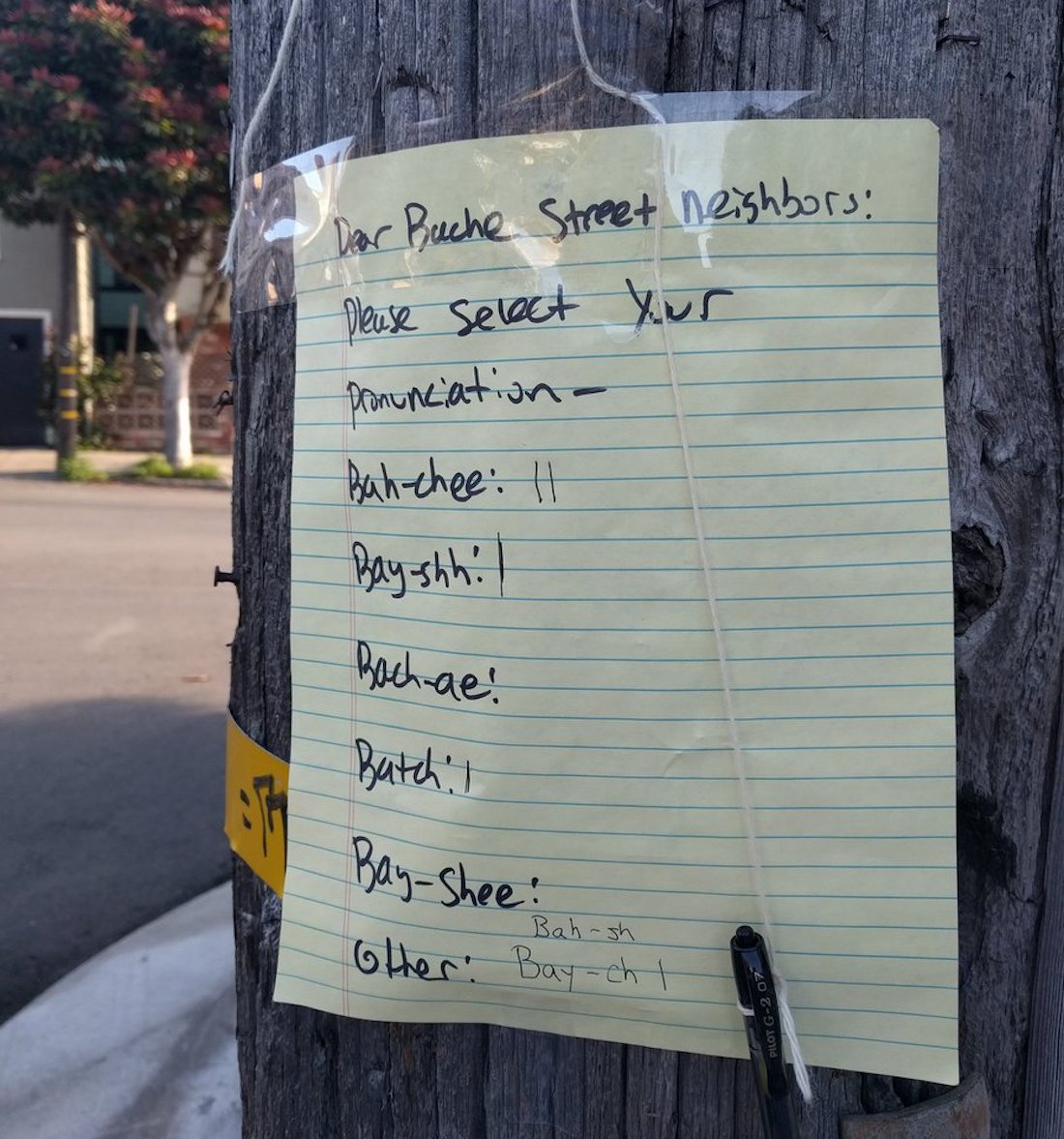 "Bache Street Residents Unsure How to Pronounce ""Bache Street"